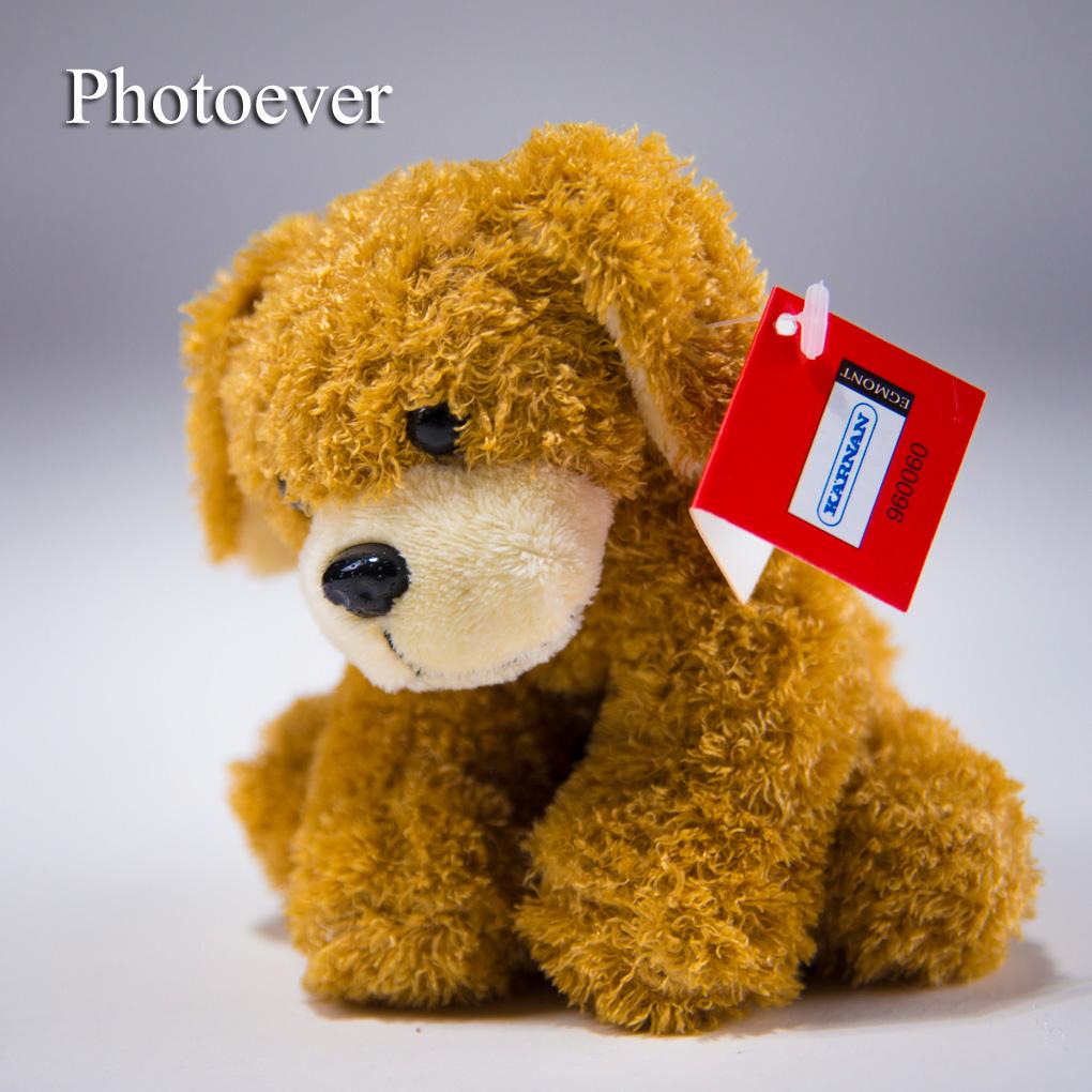 photoever10i